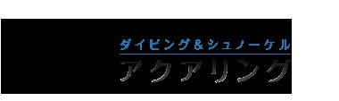 沖縄で口コミ1位のダイビング&シュノーケルショップ「aqua ring(アクアリング)」 ロゴ