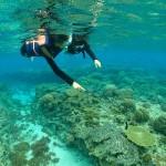 瀬底島・沖縄本島北部週のーケリング