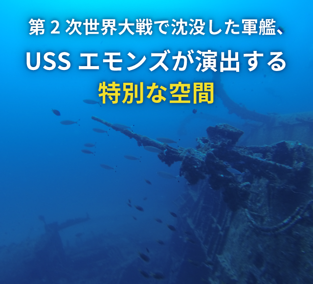 第2次世界大戦で沈没した軍艦、 USSエモンズが演出する特別な空間